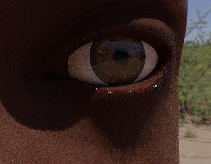 _images/eyelash_update_cycles.png
